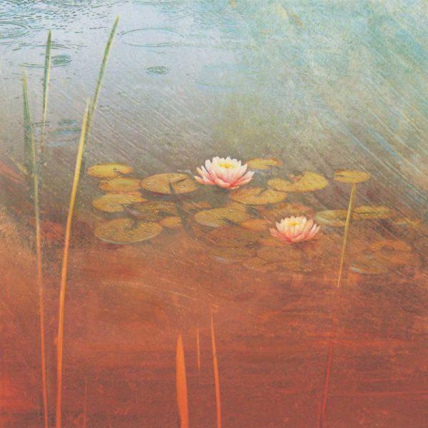 Pond Lilies II
