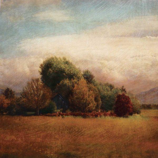 Autumn Horizon I