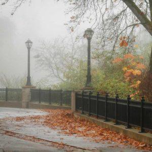 Fall Plaza II