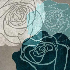 Rose IIA