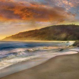 Malibu Sun