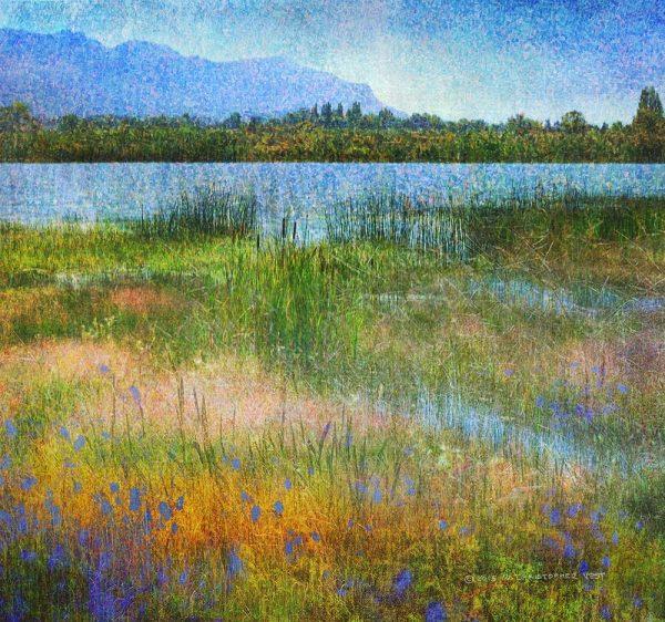 Lake Near Mesa Verde