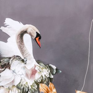 Swan Gold 1