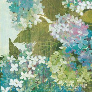Grandiflora Bloom II