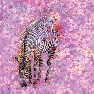 Crazy Zebra II