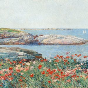 Poppies- Isles of Shoals