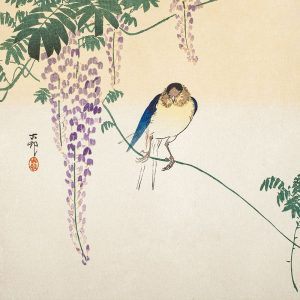 Wisteria and Swallow