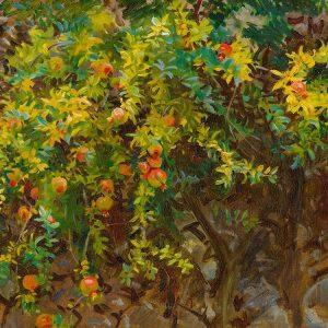 Pomegrantes, Majorca, 1908