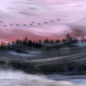 Leaving at dawn
